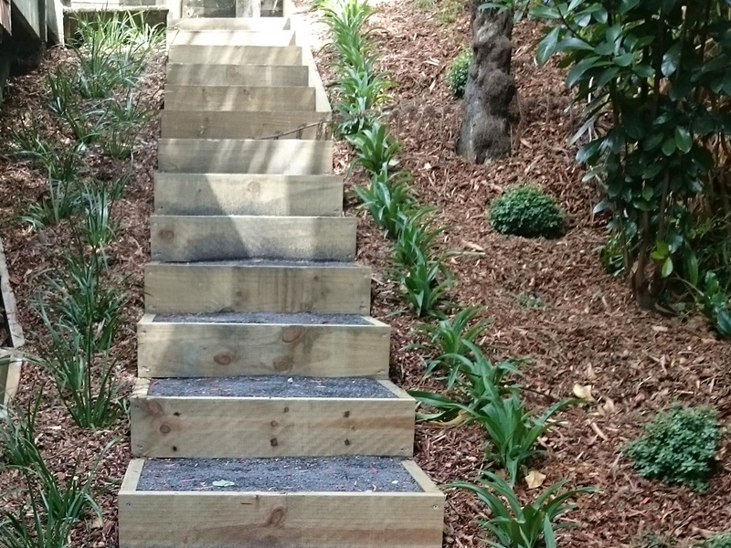 Native Planting Steps