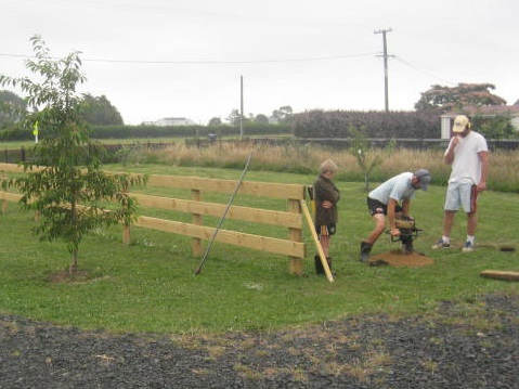 fencing orchard