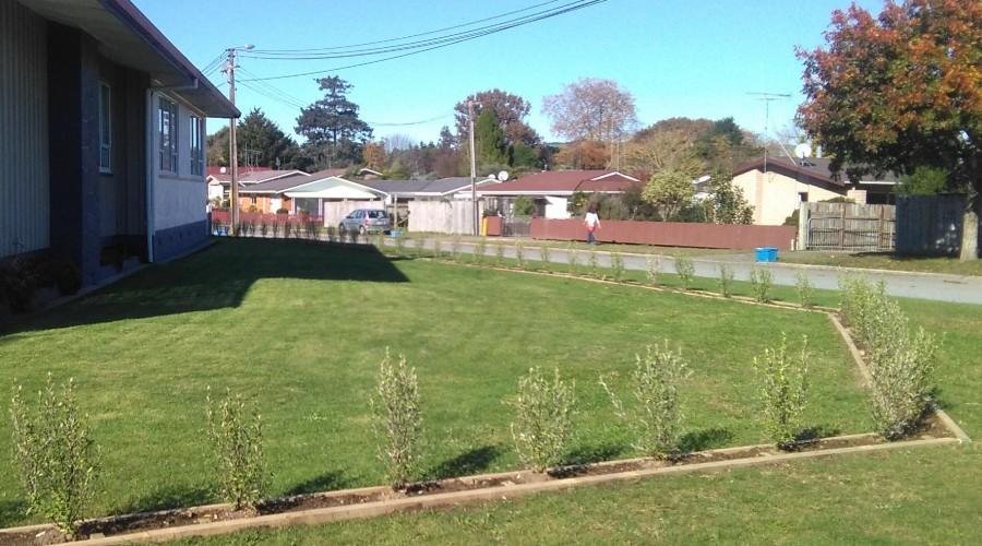 The Garden Edging saga Part 4